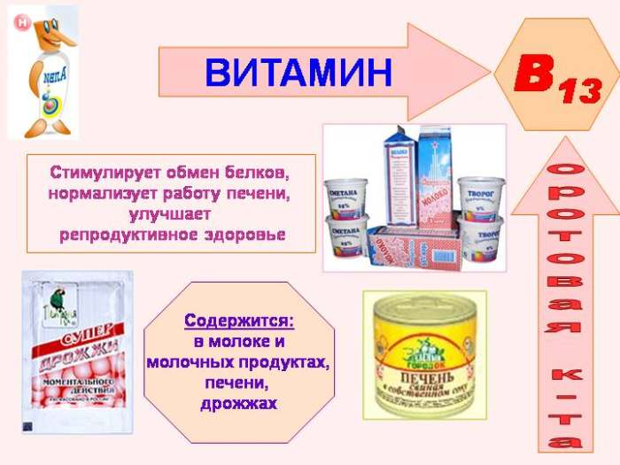 Оротовая кислота (витамин В13)