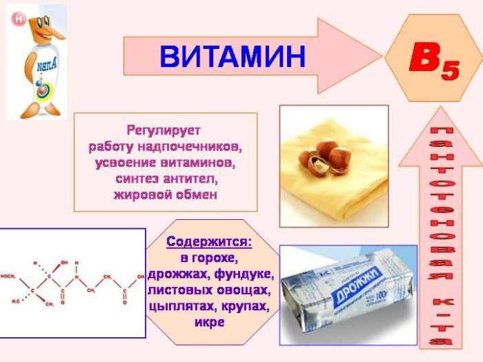 Пантотеновая кислота (витамин В5)