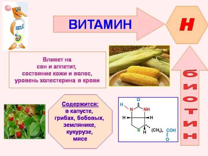 Биотин (витамин Н)