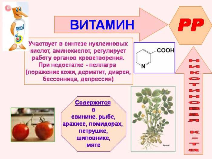 Никотиновая кислота (витамин В3, ниацин, витамин РР)